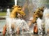 26-s1430114-versailles-fontaine-apollon