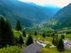 24-s1410486-suisse-col